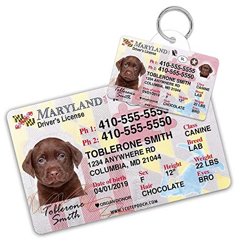 Maryland Driver License Custom Dog Tag for Pets and Wallet Card - Personalized Pet ID Tags - Dog Tags for Dogs - Dog ID Tag - Personalized Dog ID Tags - Cat ID Tags - Pet ID Tags for Cats