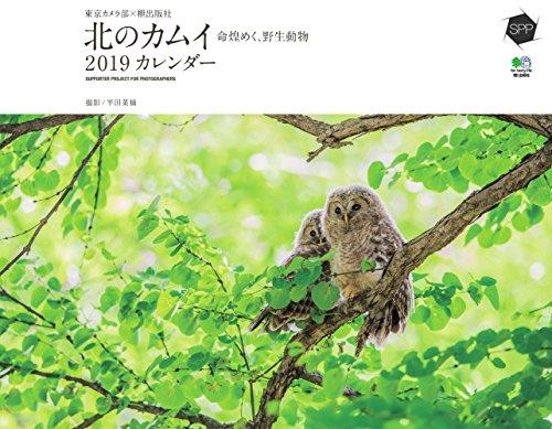 カレンダー2019 東京カメラ部×枻出版社 北のカムイ 命煌めく、野生動物の詳細を見る