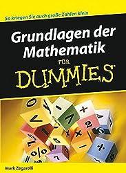 Grundlagen der Mathematik für Dummies Buch