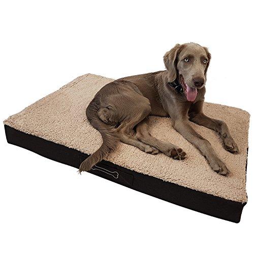 DILUMA Orthopädisches Hundebett Benji Größe L (100 x 65 x 10 cm) - optimaler Liegekomfort für Ihr Haustier - viscoelastische Hundematratze mit abnehmbaren Bezug und Antirutschbeschichtung
