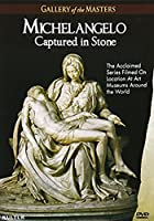 Michelangelo: Captured in Stone: Gallery of the [DVD] [Import]