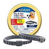 Best Flea Collars For Dogs - Adams Flea & Tick Collar Plus for Dogs Review