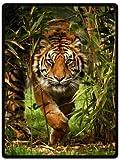 YISUMEI - 125 x 150 cm Decke - Heftiger Tiger Fleecedecke,Kaschmir-Gefühl Kuscheldecke Geeignet für Bett oder Sofa