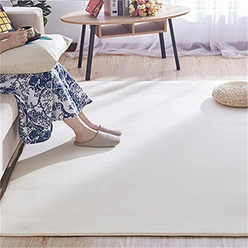 Alfombras Modernas Super Soft Touch Crema Rugs de Vellón Coral Shaggy Rug Grandes para Sala de Estar Tapete Mullidas para Dormitorio Moqueta Cortas Adecuadas para la Decoración del Hogar(41)