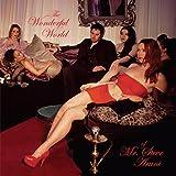 The Wonderful World of Mr Steve Aruni (Remastered) [Explicit]