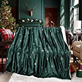 Exclusivo Mezcla 50' x 70' Large Starry Throw Blanket, Reversible Ultra Soft Velvet& Plush Sherpa Blanket (Snowflakes & Stars, Green) - Decorative, Lightweight, Soft and Warm
