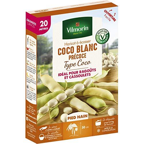 Vilmorin - Graines de Haricot à écosser Coco Blanc Précoce type Coco 20m - Phaseolus Vulgaris