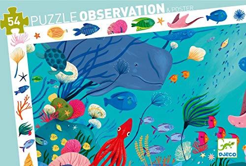 P. observación acuatico