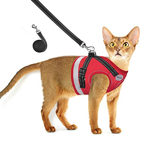 AVCCAVA Cat Harness and Leash for Walking, Escape Proof Soft and Breathable Adjustable Vest Harness for Cats, Lightweight Easy to Control Small Dog Kitten Harness, Comfortable Outdoor Jacket (S, Red)