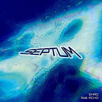 Septum (feat. Ach D & Tom D.)
