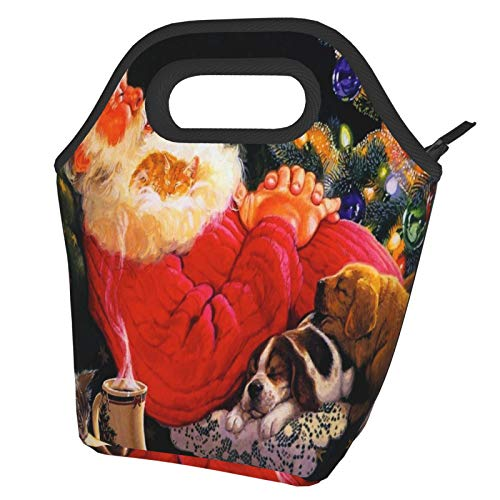 Bolsas de almuerzo con aislamiento portátil de Papá Noel y gato en la siesta, bolsa de almuerzo reutilizable para hombres, adultos, niñas, trabajo, escuela, picnic