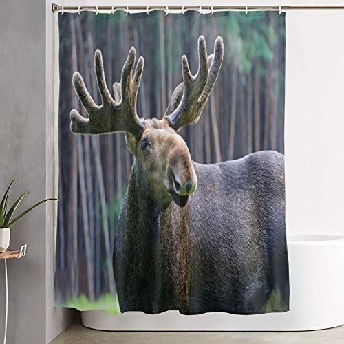 VINISATH Cortinas de Ducha,Alces en su hábitat Natural,Cortina de baño Decorativa para baño,bañera 180 x 180 cm