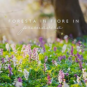 Foresta in fiore in primavera: Meditazione con la natura, Terapia curativa, Suoni della natura viva