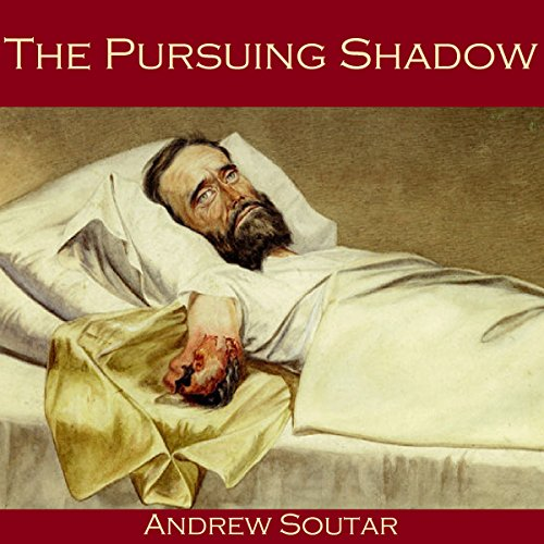 The Pursuing Shadow cover art
