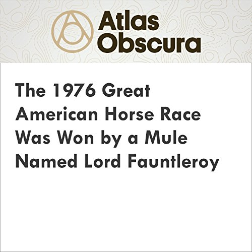 The 1976 Great American Horse Race Was Won by a Mule Named Lord Fauntleroy audiobook cover art