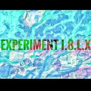 Experiment I.8.L.X