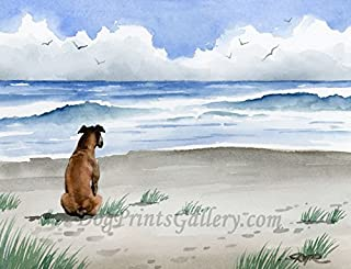 Boxer at The Beach Art Print by Watercolor Artist DJ Rogers