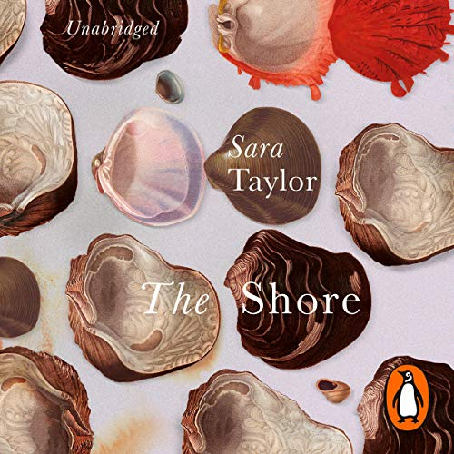 The Shore audiobook cover art