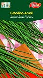 Eurogarden - Semillas Aromáticas para cultivar. (Cebollino Anual)