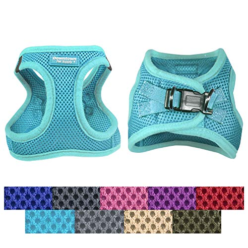 Downtown Pet Supply No Pull, Step in Adjustable Dog Harness with Padded Vest, Easy to Put on Small, Medium and Large Dogs (Light Blue, M)