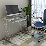 Ryan Rove Becker Metal and Glass Computer Desk - Home and Office Desks with Keyboard Tray - Writing and Laptop Console Table for Bedrooms - Modern Minimalist Design Furniture - 18x31x29 Inches, Silver