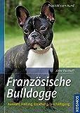 Französische Bulldogge (Praxiswissen Hund)