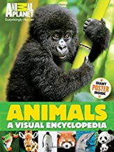 Animals: A Visual Encyclopedia (An Animal Planet Book)