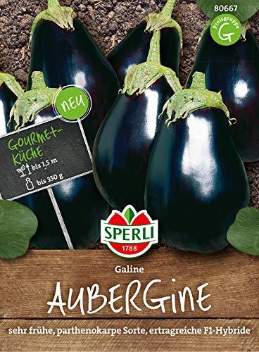 80667 Sperli Premium Aubergine Samen Galine | Frühe Sorte | Ertragreich | Aubergine Saatgut | Auberginen Samen