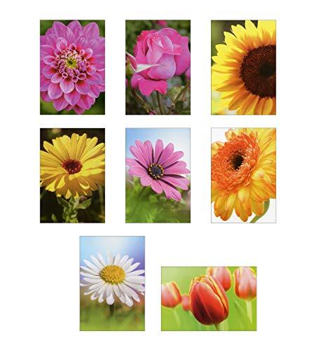 50 Grußkarten Allgemeine Glückwünsche mit Blumen ohne Text 11,5 x 17 cm Glückwunschkarten Taunus Grußkarten Verlag 99-1910