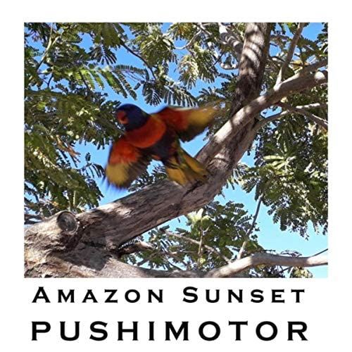 Pushimotor