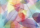 wandmotiv24 Fototapete bunte Blätter L 300 x 210 cm - 6 Teile Fototapeten, Wandbild, Motivtapeten, Vlies-Tapeten Aquarell, Blatt, Herbst M1835