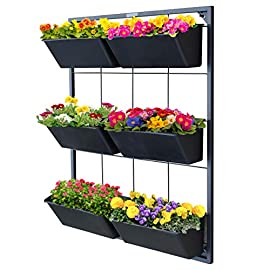 Garraí Vertical Garden Wall Planter - Wall Mounted Hanging Planter for Flowers, Vegetables or Herb Garden 8 VERTICAL PLANTER TOTAL SIZE: 26 (H) x 20 7/8 (W) x 5 1/2 (D) inches REMOVABLE PLANTER BOX: Size 4 1/2 (H) x 9 3/4 (W) x 5.5 (D) inches. Six (6) pots are easily removable (just lift out) from the frame to allow various re-arrangements and easy repotting. No more reaching too high or too low to plant your favorite arrangements. Remove the planter box and tend to your plants at your own comfort. Good for seniors to continue gardening. STYLISH Plant wall décor This decorative hanging planter is perfect for small spaces, balcony planter, patio planter, or herb garden. The charcoal color of the frame and containers allows for your flowers colors to shine.