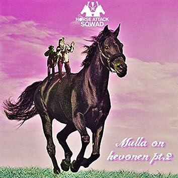 Mulla on hevonen, Pt.2