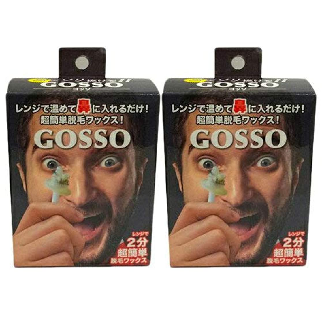 媒染剤ビジュアルスリチンモイGOSSO  2箱セット