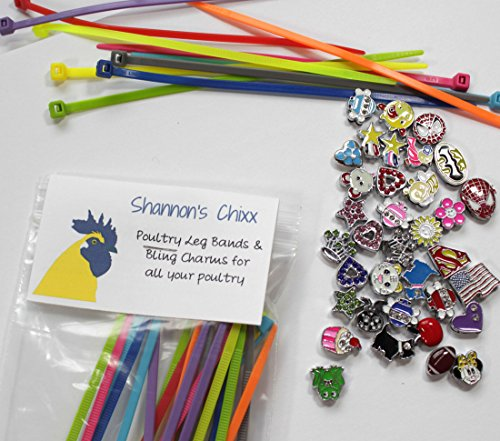 Shannon's Chixx Colorful Poultry Leg Bands for Home Chicken Coops, Identification Bands for Chickens, Ducks, Geese, and Turkeys, Set of 20 Unique Charms