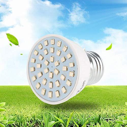 DirectSupply ProLED - Lámpara LED para plantas   Lámpara LED para el crecimiento de plantas   Luz para plantas LED con conector E27 y 72 puntos de luz
