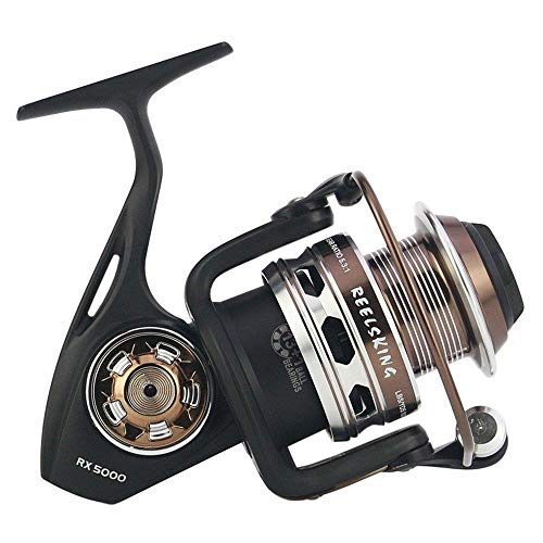 HXF- Pesca Pesca línea RX Completa Mar del Agua del Metal Engranaje de Pesca Tela de Carbono Pesca Carrete Anti-Freno Precisión (Size : 5000)