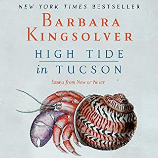 High Tide in Tucson cover art