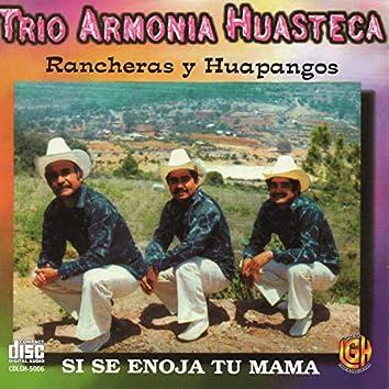 Rancheras y Huapangos