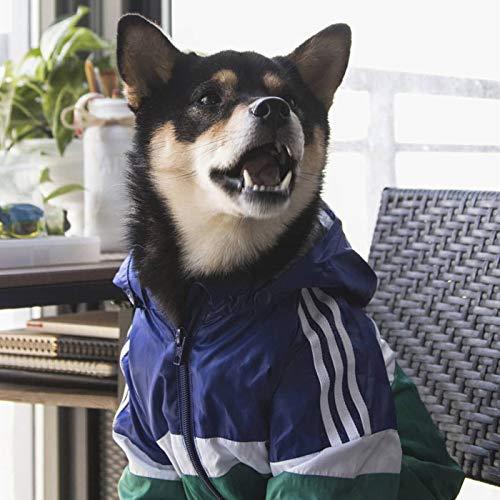 Vêtements pour chien « Adidogs » - Couleur contrastée - Imperméable - Pour fête costumée - Décoration pour chien - Bleu - Taille 3XL