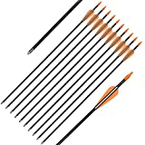 Elong Fiberglass Arrows Archery 24 Inch Target Shooting Practice Safetyglass Recurve Bows Suitable for Youth Children Woman Beginner (6 pcs)