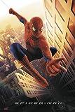 Spider-Man Regular Poster (68,5cm x 101,5cm)