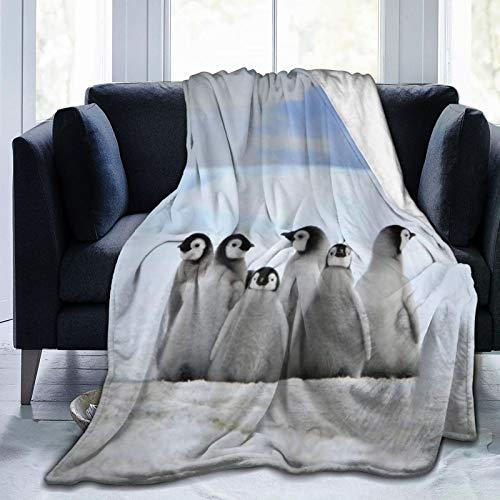 YOUMEISU Kuscheldecke Fleecedecke Flanell Decke Meerestiere Junge Pinguine Bild Hintergrund Mit Schneehaufen Und Winter Himmel Bild Blanket Für Bett Sofa Schlafzimmer Büro 153x204cm