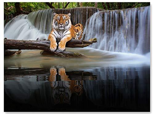 wandmotiv24 Leinwand-Bild Tiger am Wasserfall, Größe 80x60cm, Querformat, Wandbilder, Dekoration Wohnzimmer modern, Tiere, Dschungel, Raubtier, Tier, Wasser, Natur, Katzen, Raub-Katze, Deko M0100