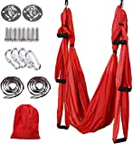 WSZS Aerial Yoga Swing Set,Aerial Yoga Hammock Trapeze,Ultra Strong Antigravity Yoga Hammock/Sling/Inversion Tool for Improved Yoga Inversions, Flexibility Core Strength