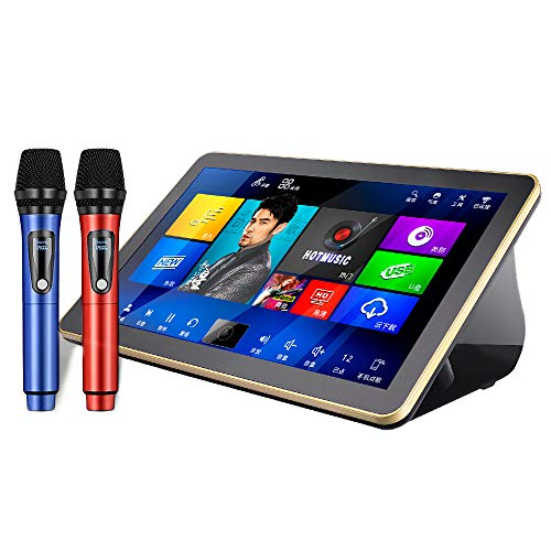 Best Buy! KTV Karaoke Player, DIANXUN New Karaoke Machine Professional 18.5 inch 4K Touch Screen 6TB...