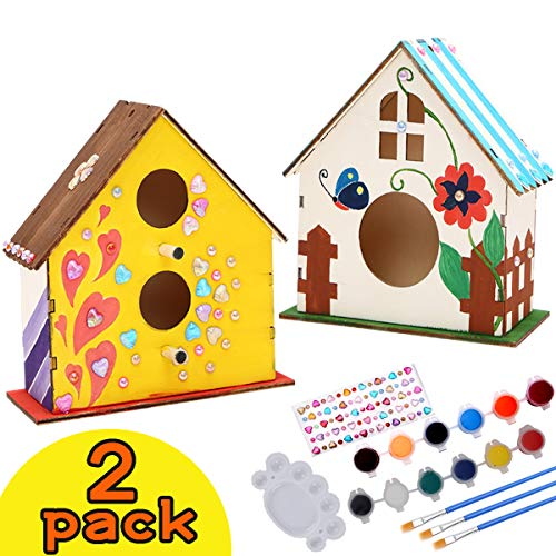 2 Pack DIY Bird House Kit for Kids, DIY Wooden Crafts Arts for Girls Boys 4-12, Build and Paint Birdhouse Including Paints & Brushes