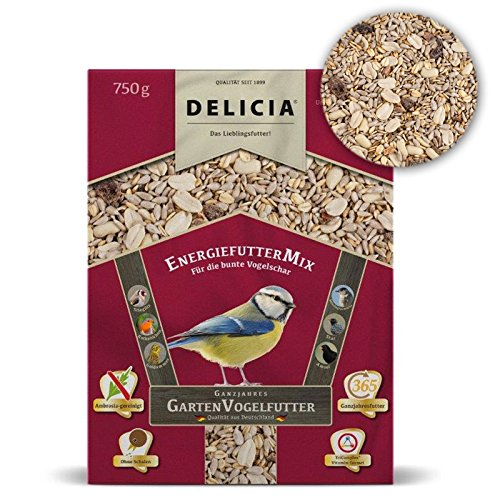 Delicia Doublure Doublure énergie Mix d'Hiver pour oiseaux sauvages, 750 g