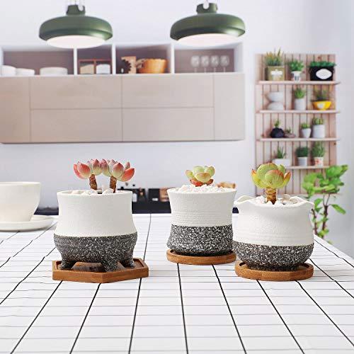 T4U8CM陶器鉢多肉植物鉢サボテン鉢植木鉢ミニ鉢底穴あり竹製トレイ付き3点セット