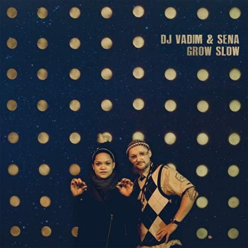 DJ Vadim & Sena